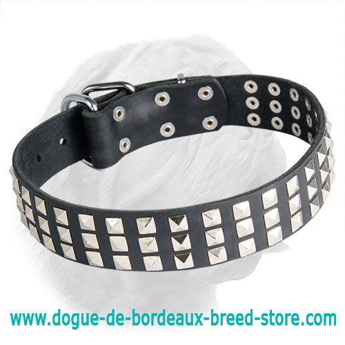 Leather Dogue de Bordeaux Collar with Steel Pyramids