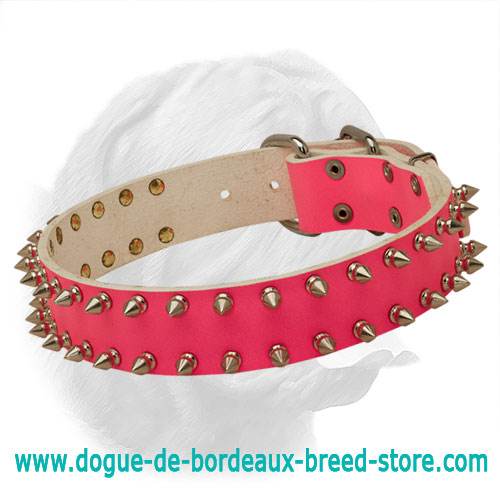 "Dogue de Bordeaux ""Pink Rose"" Spiked Leather Collar"