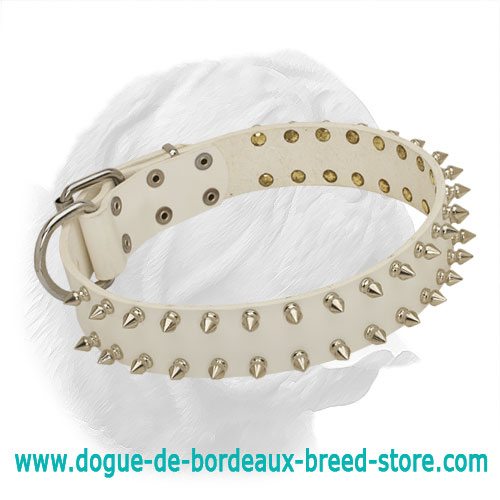 White Leather Spiked Dogue de Bordeaux Collar