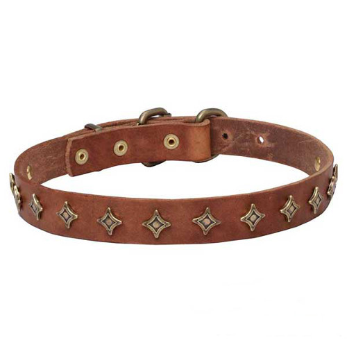 """Yellow Star"" Narrow Leather Dogue de Bordeaux Collar"