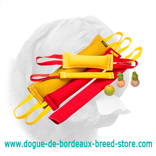 Marvelous Dogue de Bordeaux Training Set of Bite Tugs