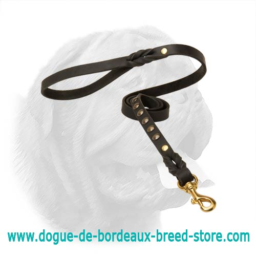 High-Grade Quality Dogue de Bordeaux Leash for Walking and Training with Studs
