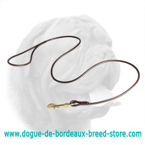 Dog Shows Dogue de Bordeaux Round Leash