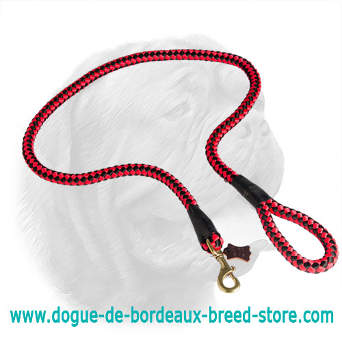 High Quality Extra Strong Cord Nylon Leash for Dogue de Bordeaux