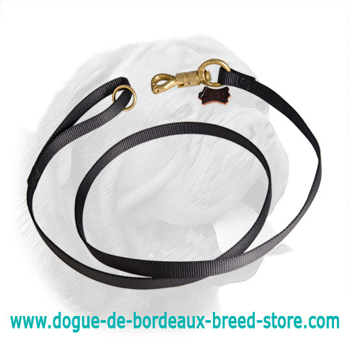 Nylon Dogue de Bordeaux Leash with Brass Plated Smart Lock Snap Hook