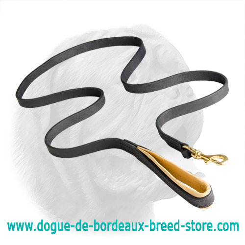 Comfortable Leather Padded Leash for Dogue de Bordeaux