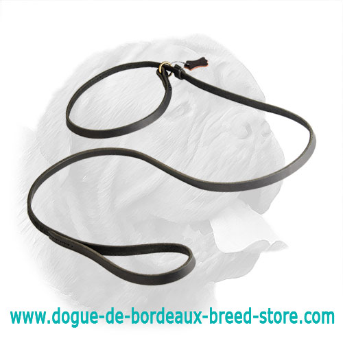 Fast Handling Leather Dogue de Bordeaux Leash with Choke Collar