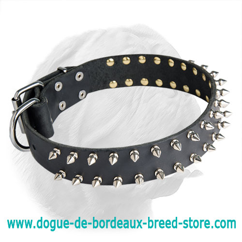 Dogue de Bordeaux Leather Spiked Dog Collar