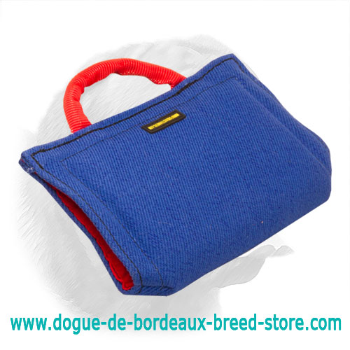 Basic Introduction Super Durable French Linen Sleeve for Dogue de Bordeaux Puppy Training