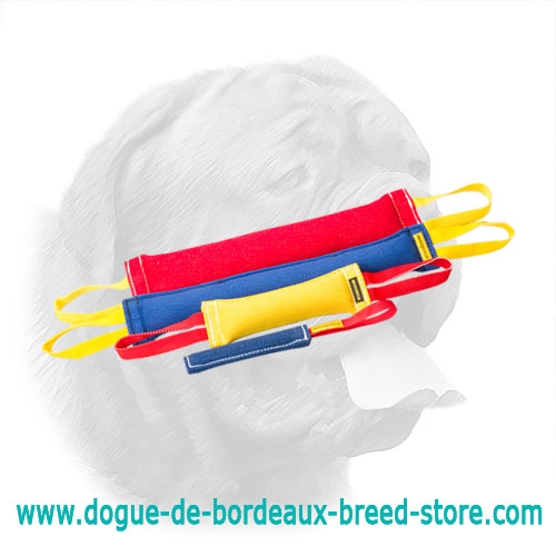 Great French Linen Bite Set for Dogue de Bordeaux
