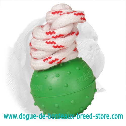 Dotted Surface Solid Rubber Dogue de Bordeaux Toy for Water Training and Playing - Small