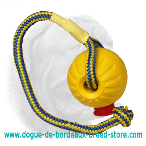 Lightweight 3 inch Foam Ball for Dogue de Bordeaux Training - Medium
