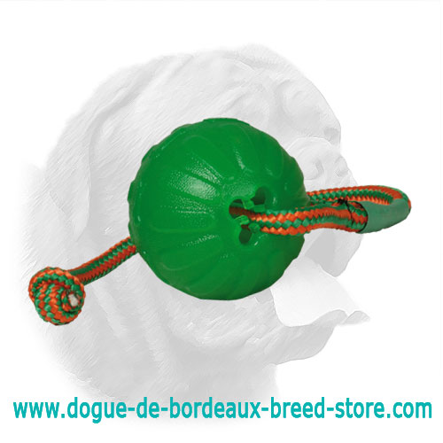 Chew Rubber Ball for Dogue de Bordeaux