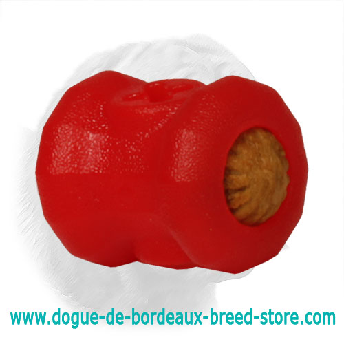 Chewing Fire Plug Dogue de Bordeaux Toy - Small