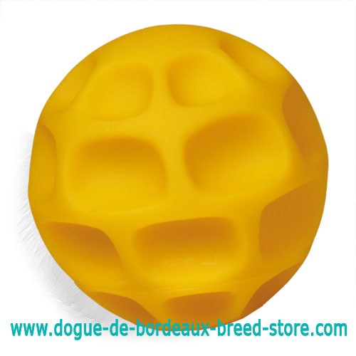 Honeycomb Treat Dispensing Dogue de Bordeaux Tetraflex Ball - Large