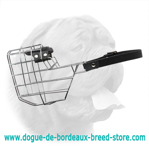 'The Silencer' Enhanced Design One-Strap Wire Cage Muzzle for Dogue de Bordeaux