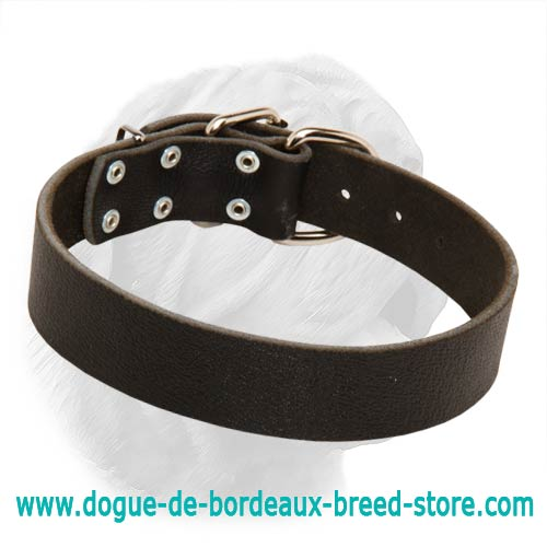 1 1/2 Inches Wide Plain Design Leather Collar for Dogue de Bordeaux