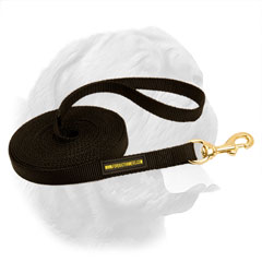 Any weather material for Dogue de Bordeaux leash