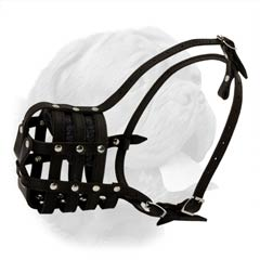 Enhanced airflow everyday leather muzzle