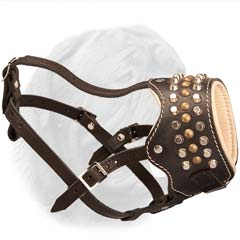 Open-Style Leather Muzzzle with Studs