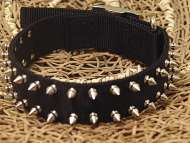 Black Nylon Spiked Dog Collar